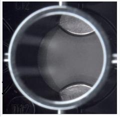 Tecan Hydrospeed 特点-单孔双磁珠.png